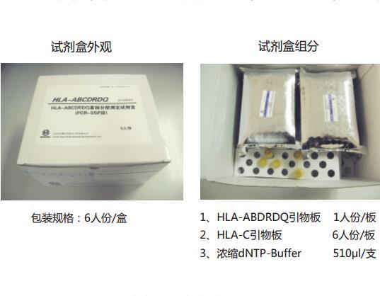 血型基因检测产品